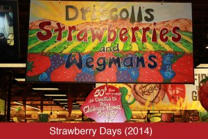 Strawberrydays2014